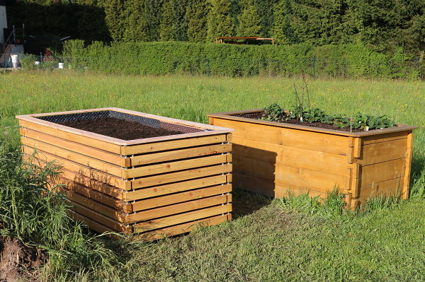 The two raised beds in the evening sun