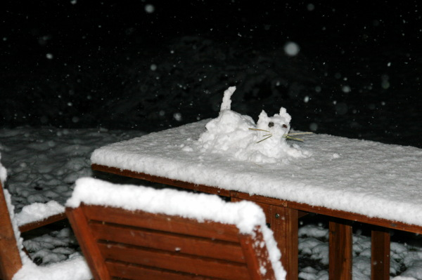 Cat made out of snow